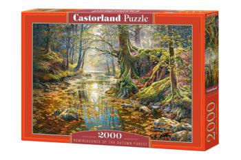 Ateepique Puzzle Puzzle2000retourdelautomne1 175